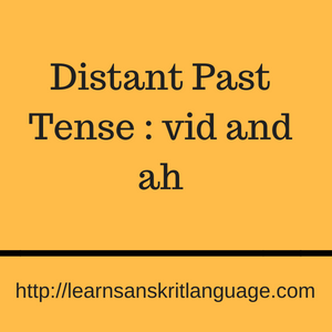 Distant Past Tense : vid and ah