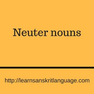 Neuter nouns