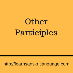 Other Participles