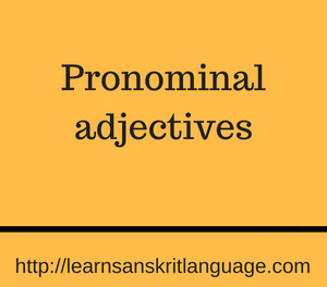 Pronominal adjectives