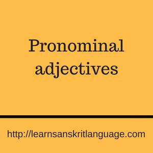 Pronominal adjectives