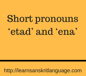 Short pronouns 'etad' and 'ena'