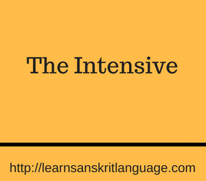 The Intensive