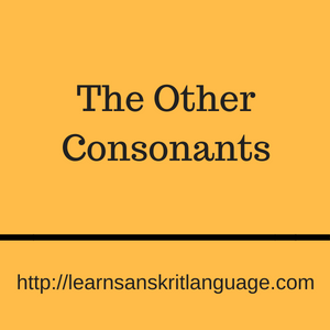 The Other Consonants