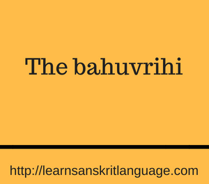 The bahuvrihi