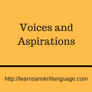 Voices and aspirations