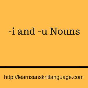 -i and -u Nouns