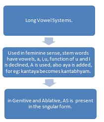 long vowel system